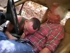 dad bonks hitch hiker
