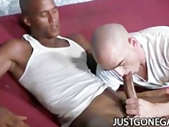 white guy worships large dark schlong