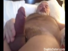 hung dad bear blows his load